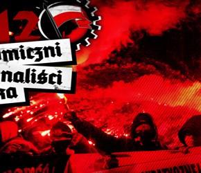 Autonomiczni Nacjonaliści 2012 (wideo)