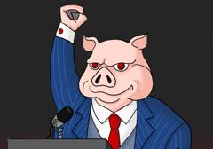 polityczna-swinia