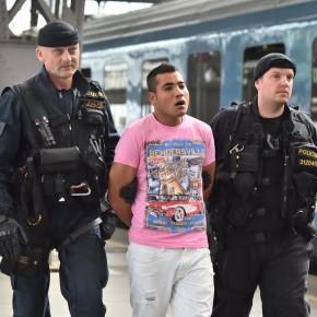 Czeska policja aresztowała prawie osiem tysięcy nielegalnych imigrantów