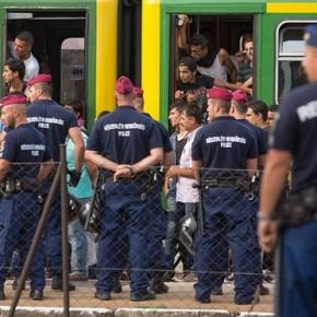 Węgry: Imigranci wyrzucili wodę i żywność otrzymaną od policji (WIDEO)