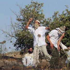 Izraelscy osadnicy atakowali palestyńskie samochody