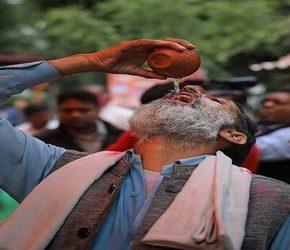 Indie bronią się przed koronawirusem pijąc mocz krowy