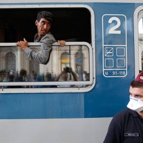 Niemiecki instytut przestrzega przed chorobami wśród ubiegających się o azyl