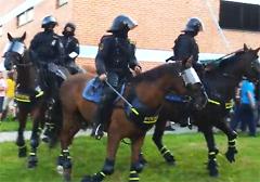 czechy-policja-rozbila-demonstracje-przeciwko-cyganskiej-przestepczosci