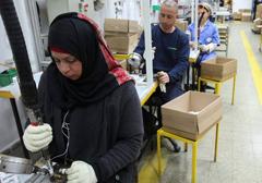 dania-imigranci-praca