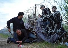 imigranci-wegry