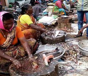 Wzrasta liczba zachorowań na bakterię z Indii
