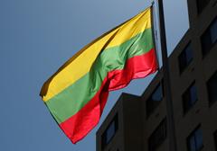 Litewska prawica wygrała pierwszą turę wyborów parlamentarnych
