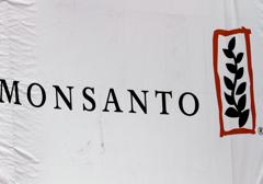 """""""Monsanto Protection Act"""" przedłużony o kolejne trzy miesiące"""