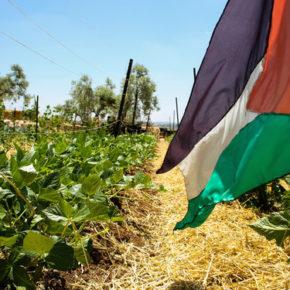 Izrael blokuje eksport palestyńskich towarów