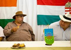 Węgierska Partia Romów wystartuje w wyborach parlamentarnych w 2014 roku