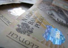 Szefowa Polskiego Towarzystwa Ekonomicznego o likwidacji polskiego kapitału