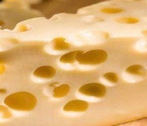Dotujemy ukraińskich producentów sera