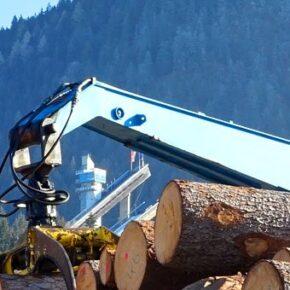 Zagraniczne firmy eksploatują przemysł drzewny
