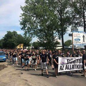 Węgierscy kibice protestowali przeciwko cygańskiej przemocy wobec zwierząt
