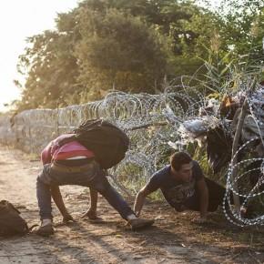 Płot na granicy węgiersko-serbskiej przepłacony?