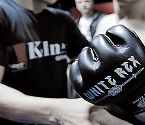 White Rex - od firmy odzieżowej po największy nacjonalistyczny turniej sportów walki